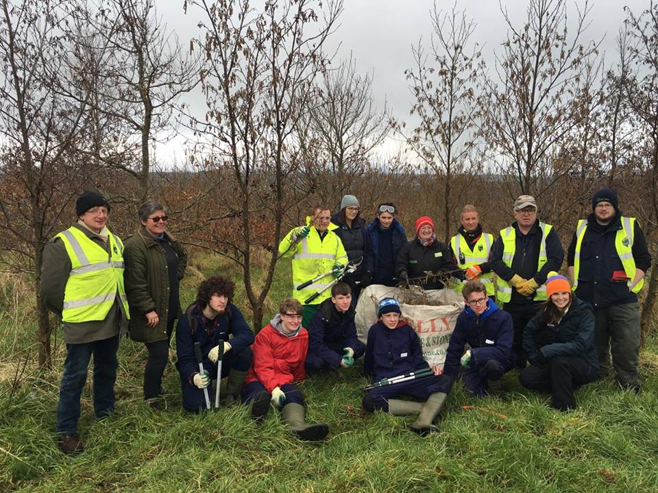 The First Volunteer Action on the Cornfield Project - March 2016